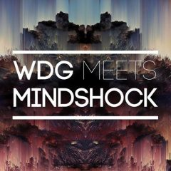 Mindshock meets WDG music